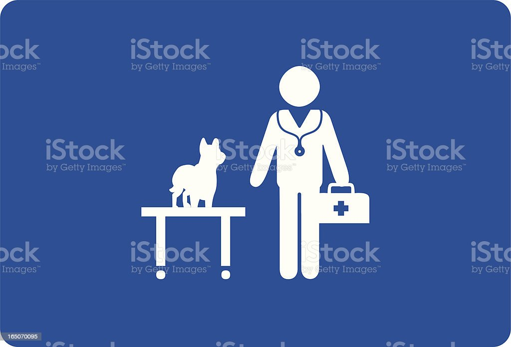 animal doctor vector art illustration