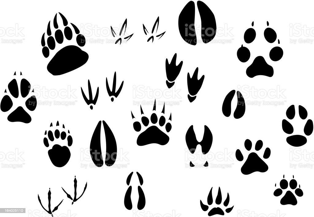 Animal footprints silhouettes vector art illustration