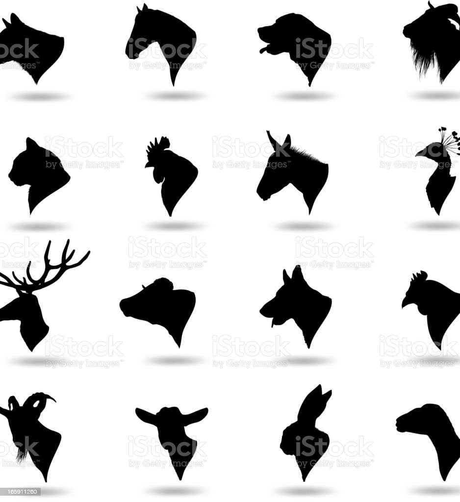 Animal Heads vector art illustration