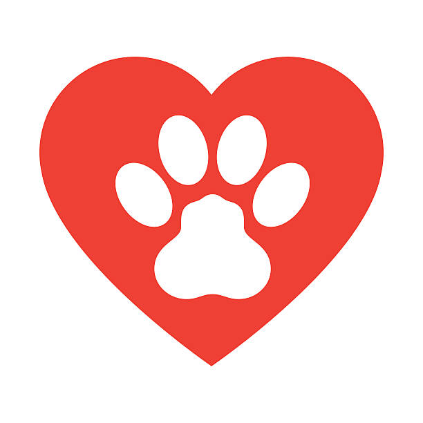 Download Paw Print Clip Art, Vector Images & Illustrations - iStock
