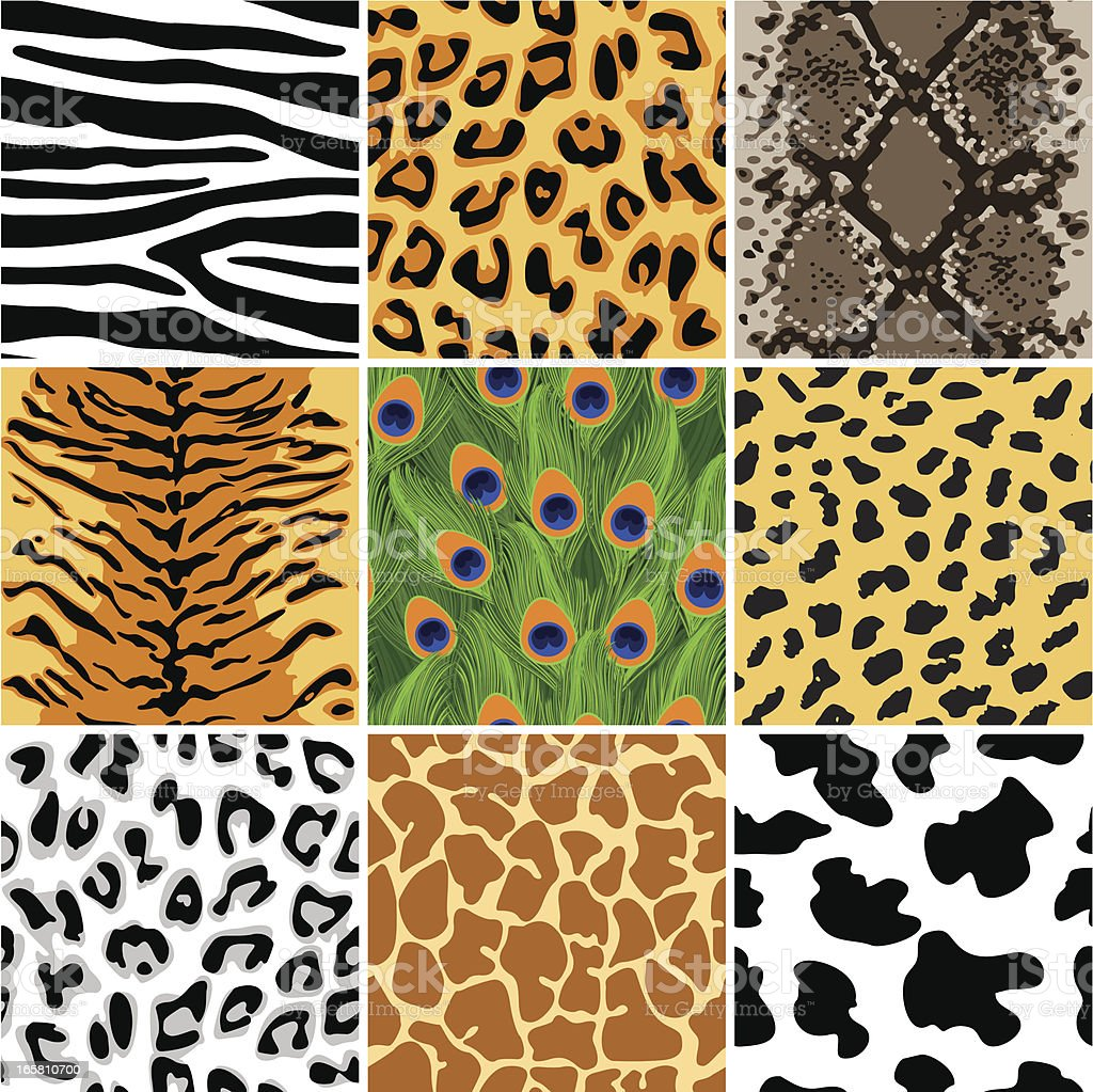 Animal seamless patterns set vector art illustration