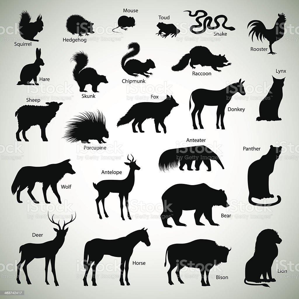 Animal silhouettes vector art illustration