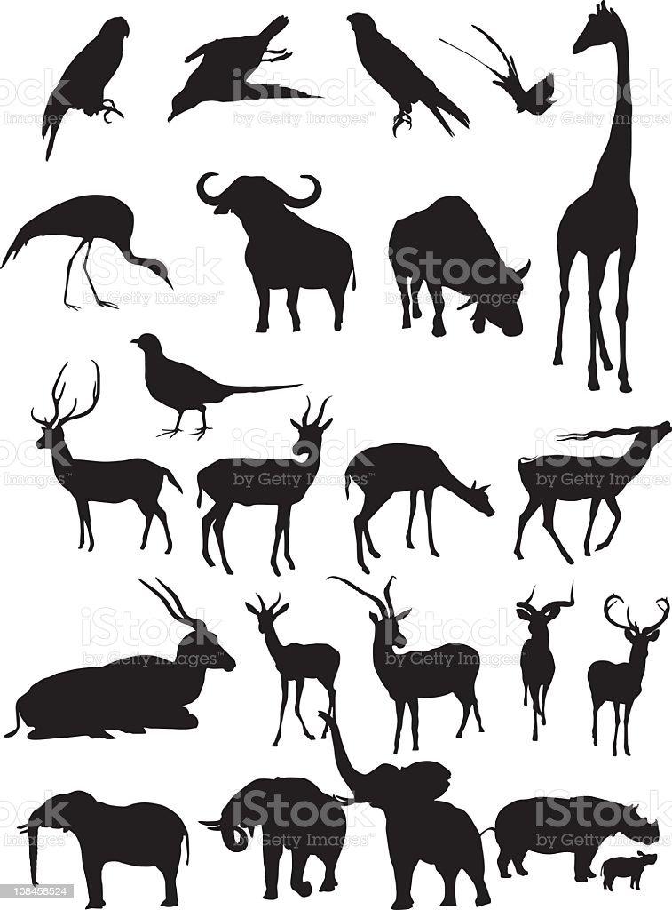 Animal silhouettes - vector royalty-free stock vector art