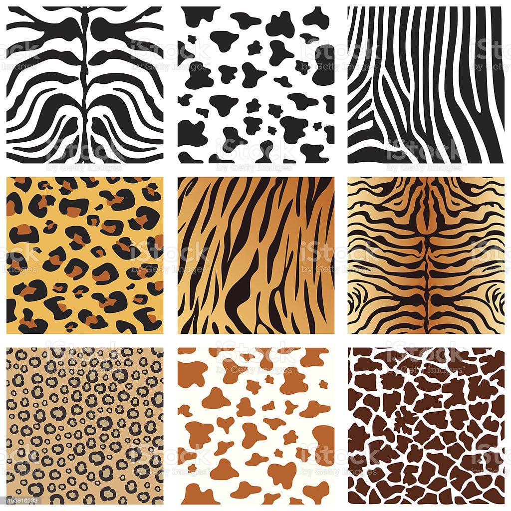 Animal Skins vector art illustration