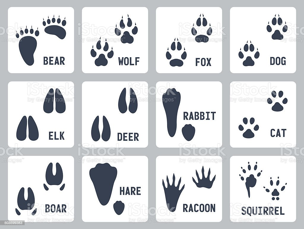 Animal tracks vector icons set vector art illustration