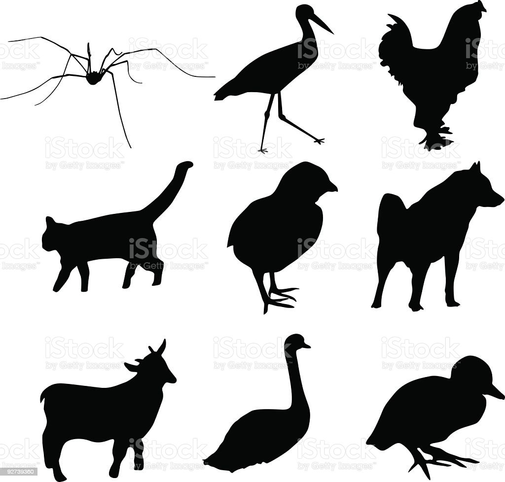 Animal vector shapes vector art illustration