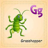 Animals alphabet: G is for Grasshopper