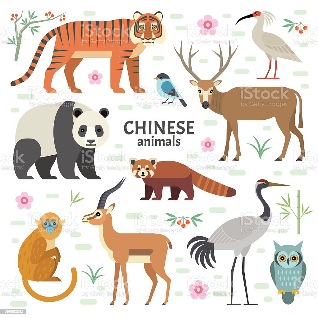Animals China. vector art illustration