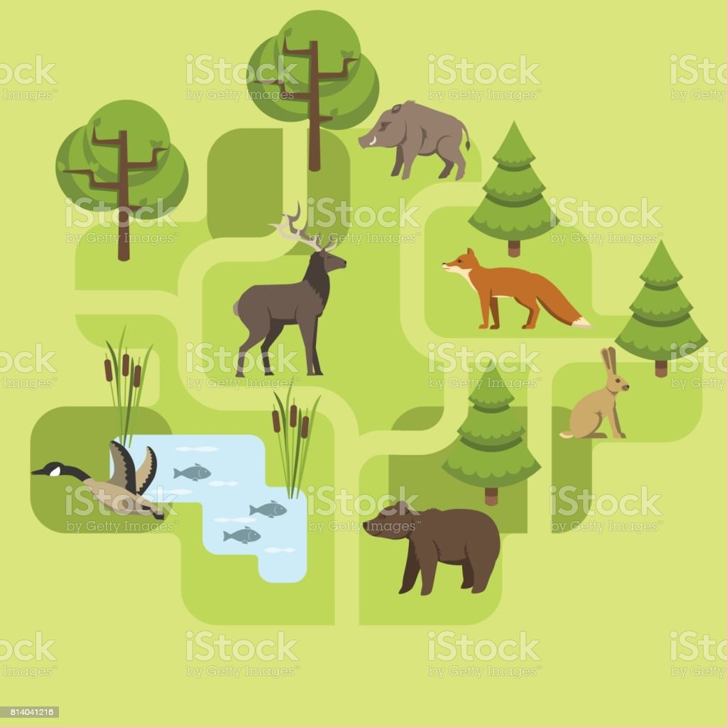 animals europe vector art illustration