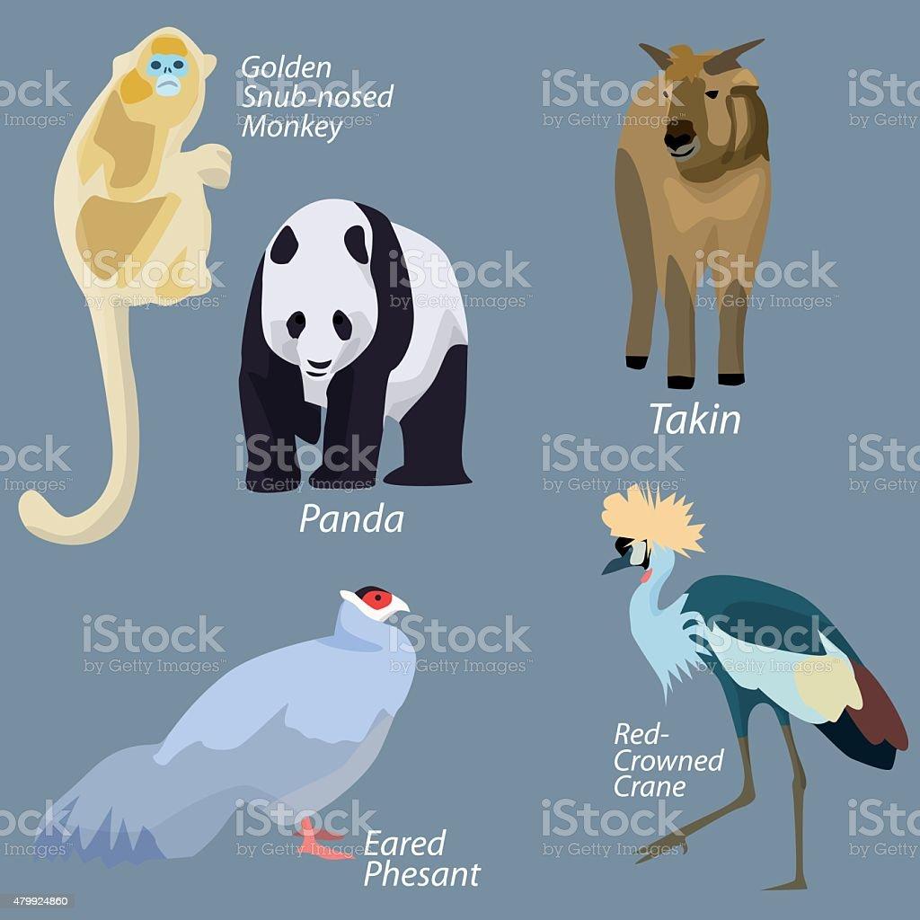 Animals of China in simple design vector art illustration