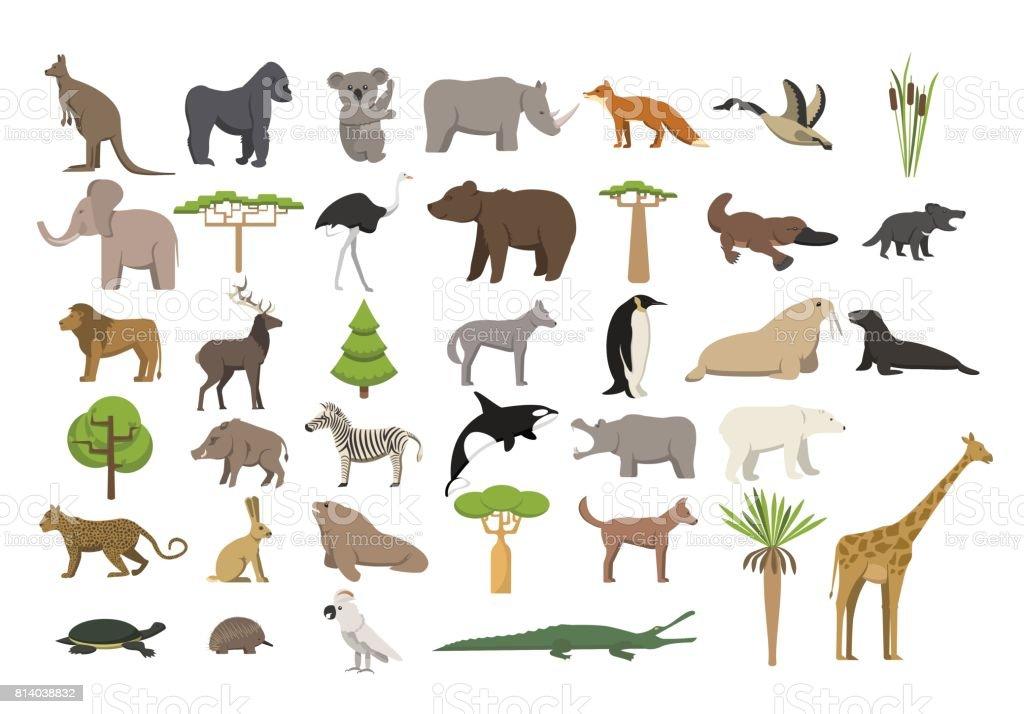 Animals of the world set vector art illustration