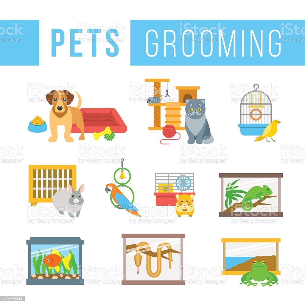 Animals pets grooming flat colorful vector illustrations vector art illustration