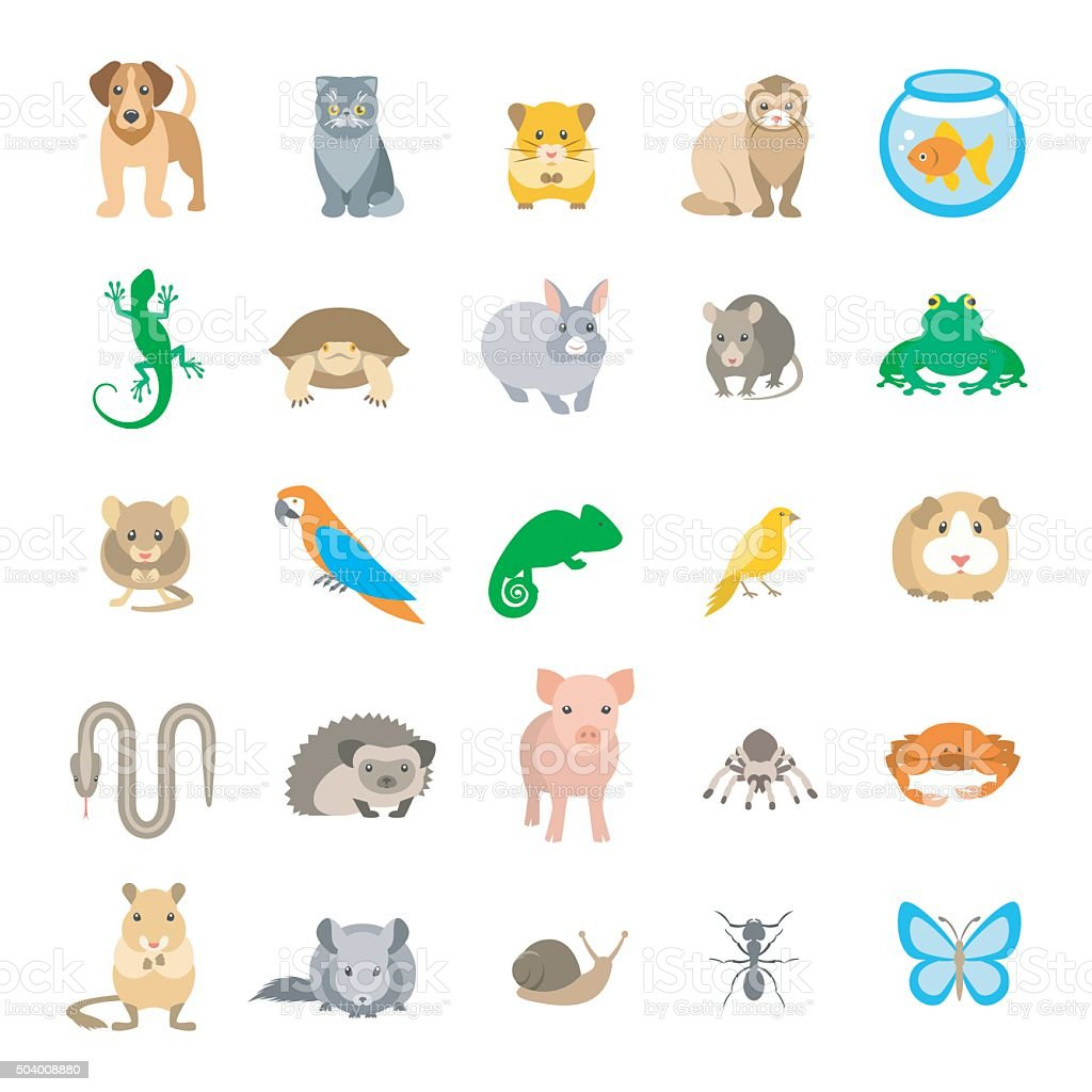 Animals pets vector flat colorful icons set isolated on white vector art illustration