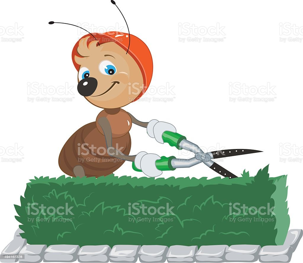 Ant Gardener cuts bush. Gardener with scissors cuts the leaves vector art illustration
