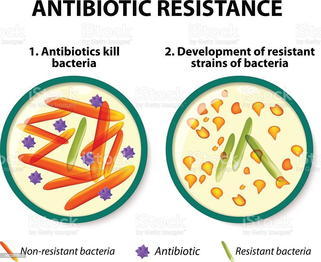 Antibiotic resistance vector art illustration