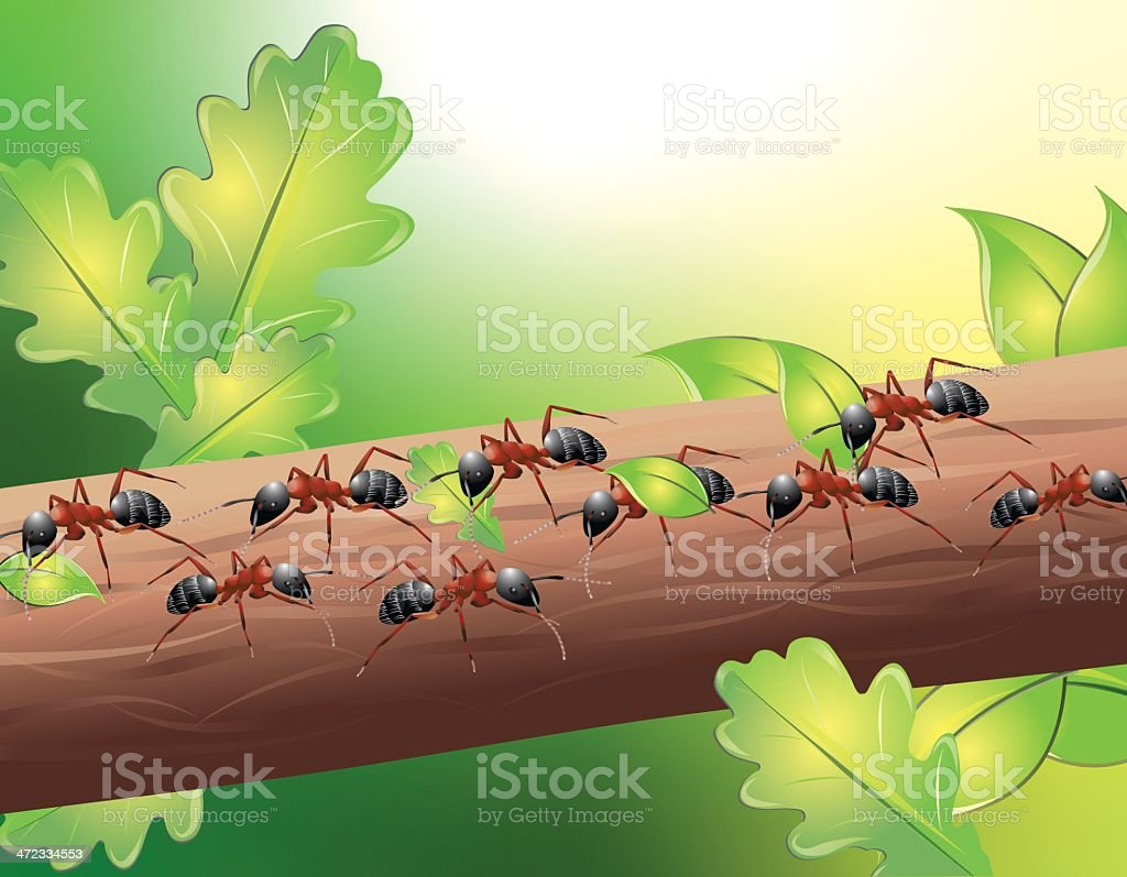 Ants at work royalty-free stock vector art