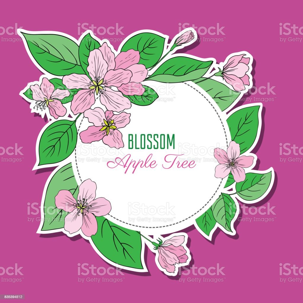 Round frame with decorative branch vector illustration stock - Apple Blossom Flower Bud Leaf Branch Vector Colorful Doodle Sketch Hand Drawn Isolated