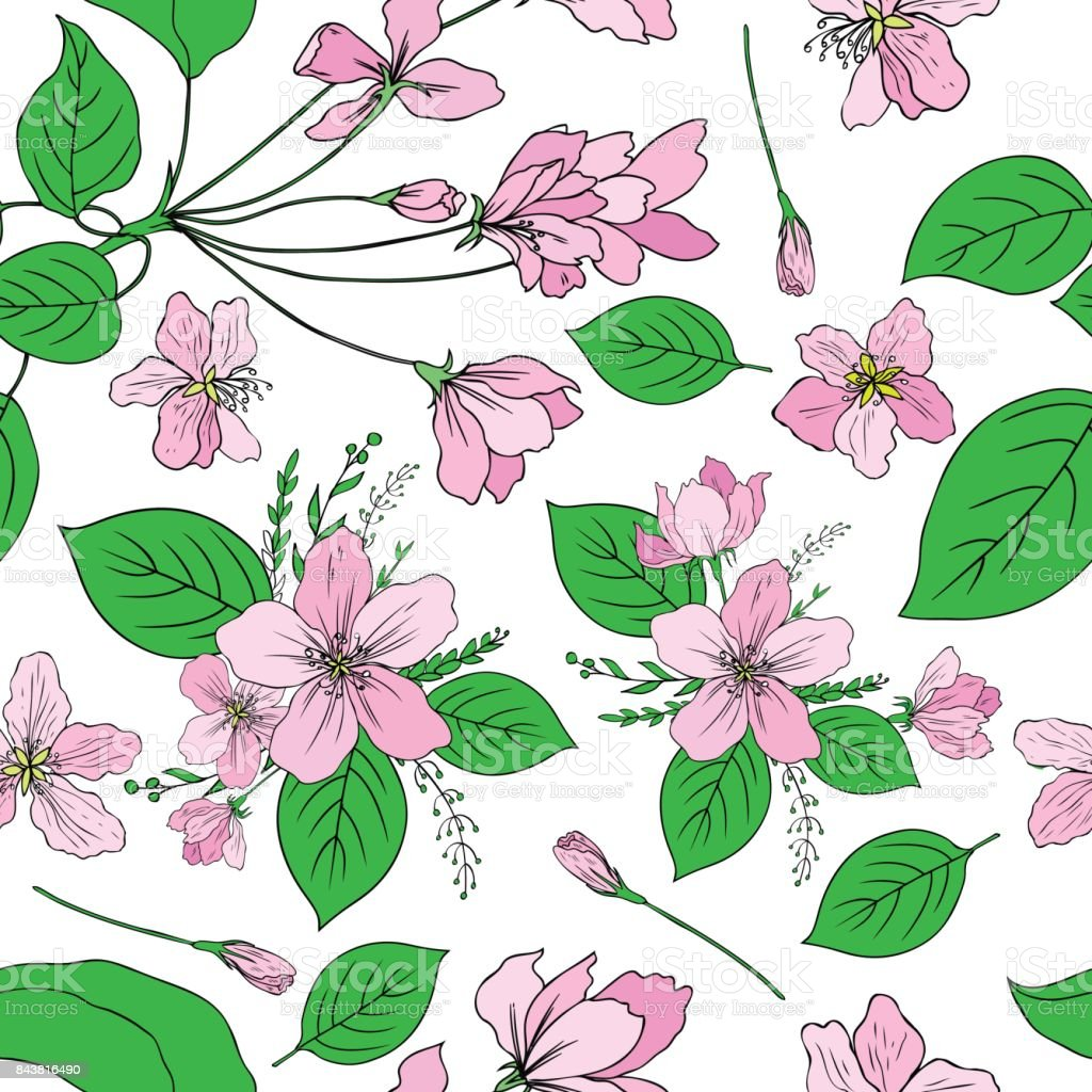 Apple flowers tree blossom, bud, leaf, branch colorful botanical sketch hand drawn isolated on white, seamless vector pattern for greeting card, package design cosmetic, wedding invitation, wallpaper vector art illustration
