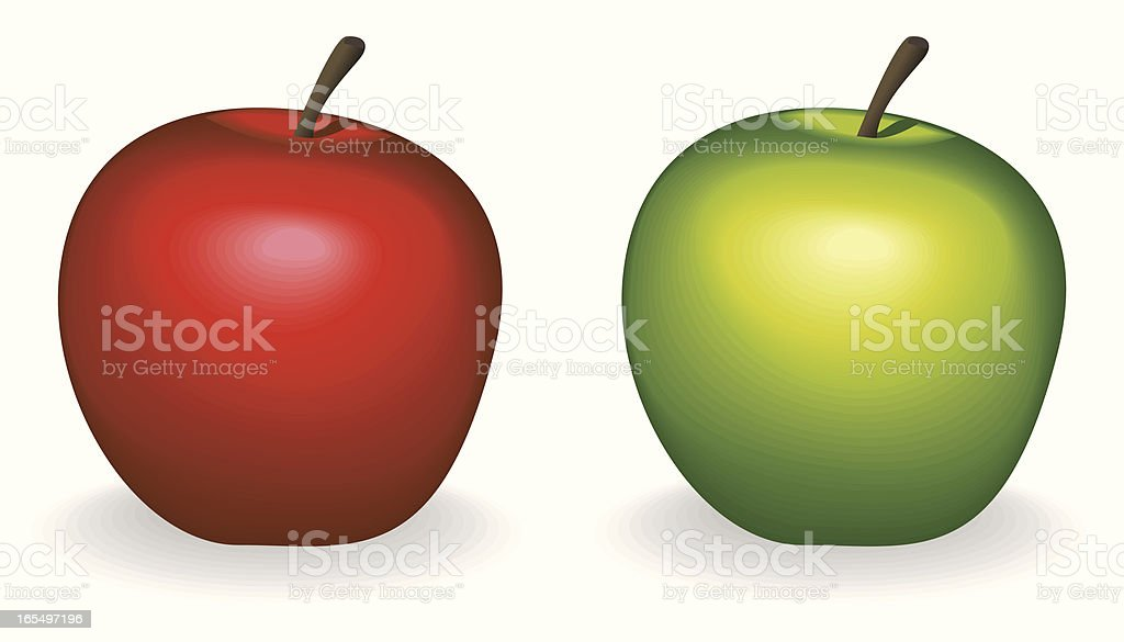 Apple Fruit vector art illustration
