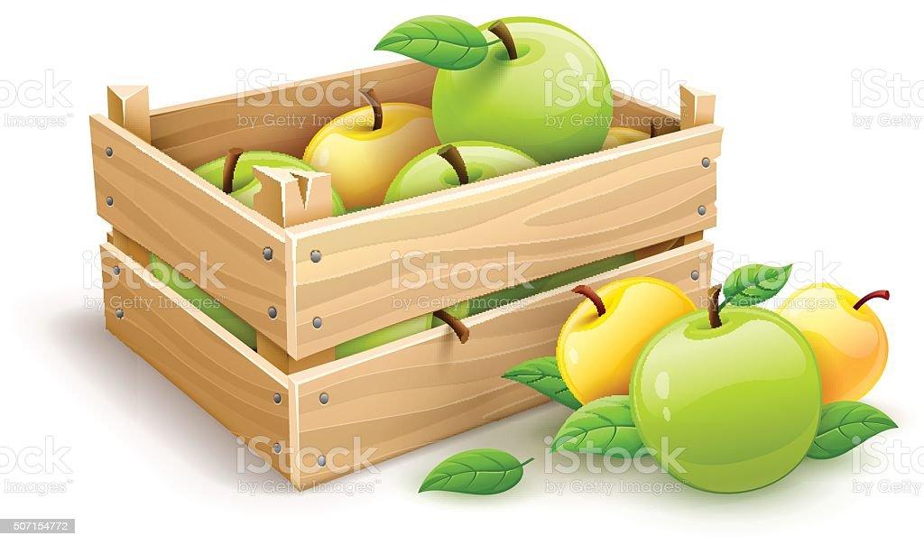 Apple fruits garden harvest in wooden box vector art illustration