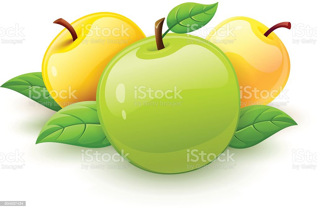 Apple fruits with green leaves vector vector art illustration
