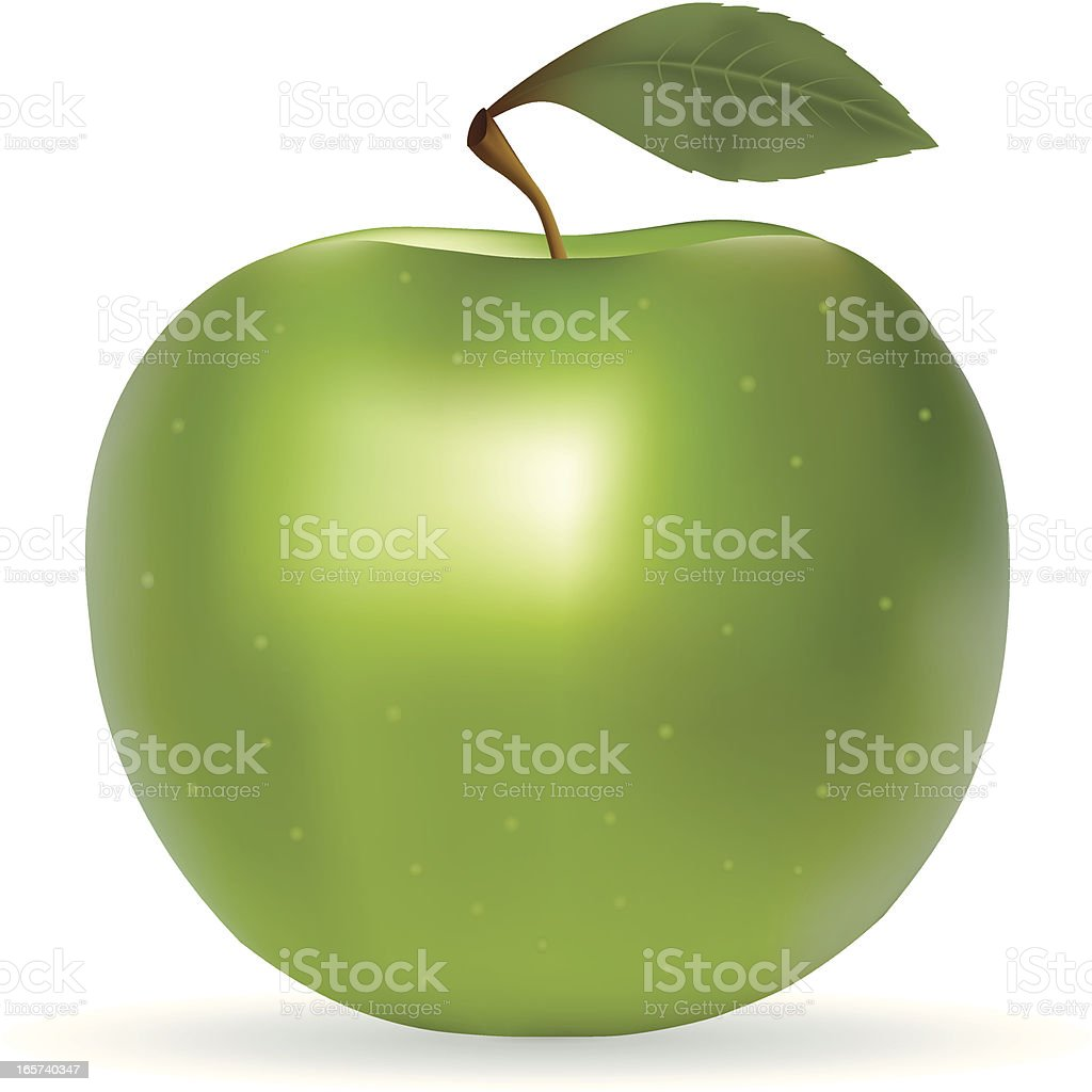 Apple Granny Smith vector art illustration