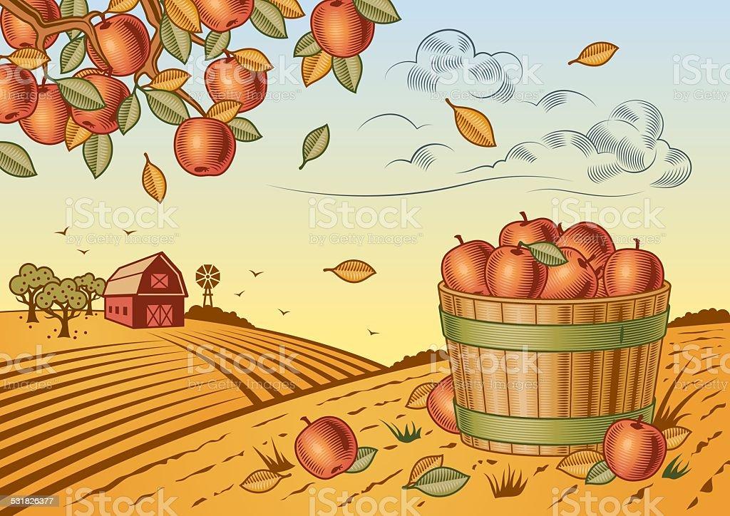 Apple harvest landscape vector art illustration