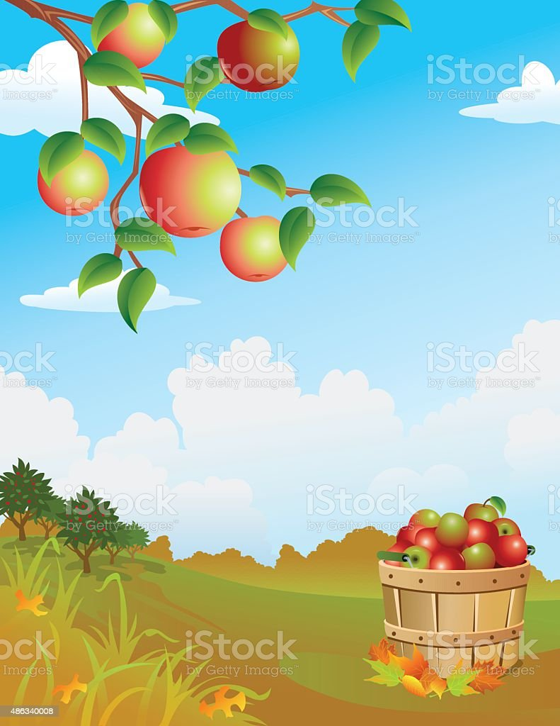 Apple Harvest vector art illustration