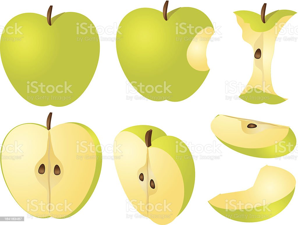 Apple illustration vector art illustration