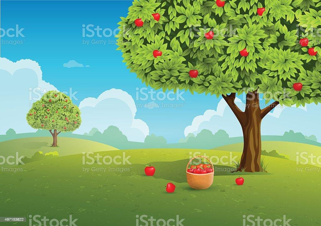 Apple orchard illustration vector art illustration