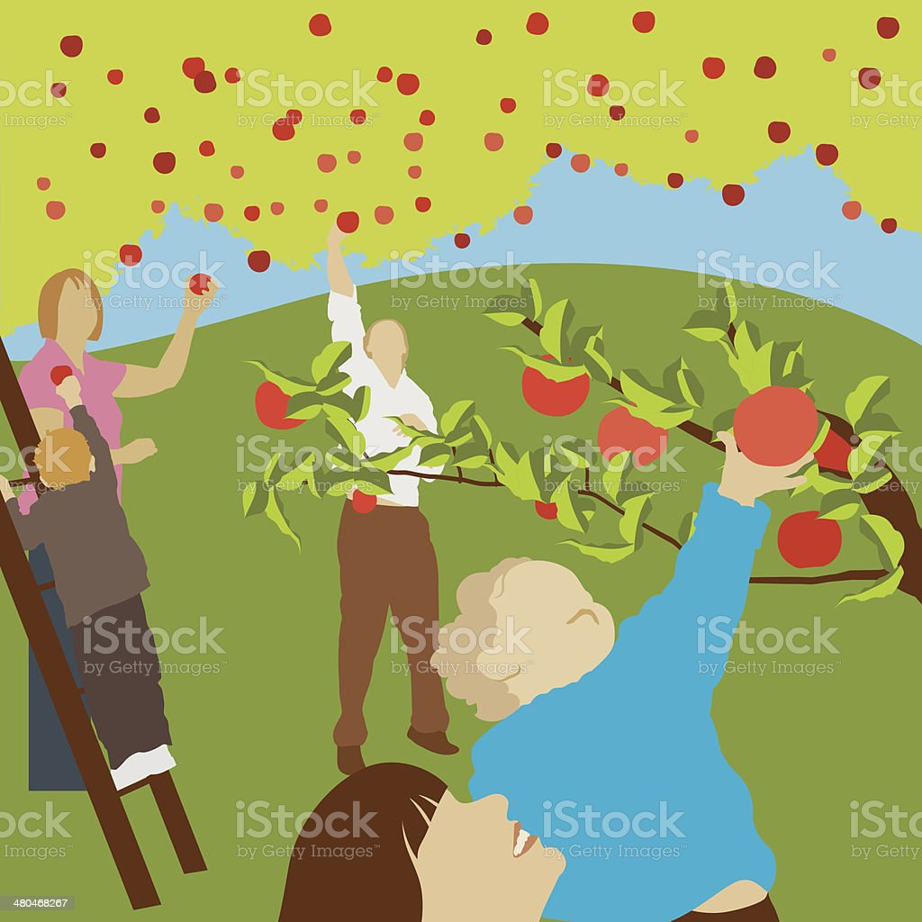 Apple Orchard vector art illustration