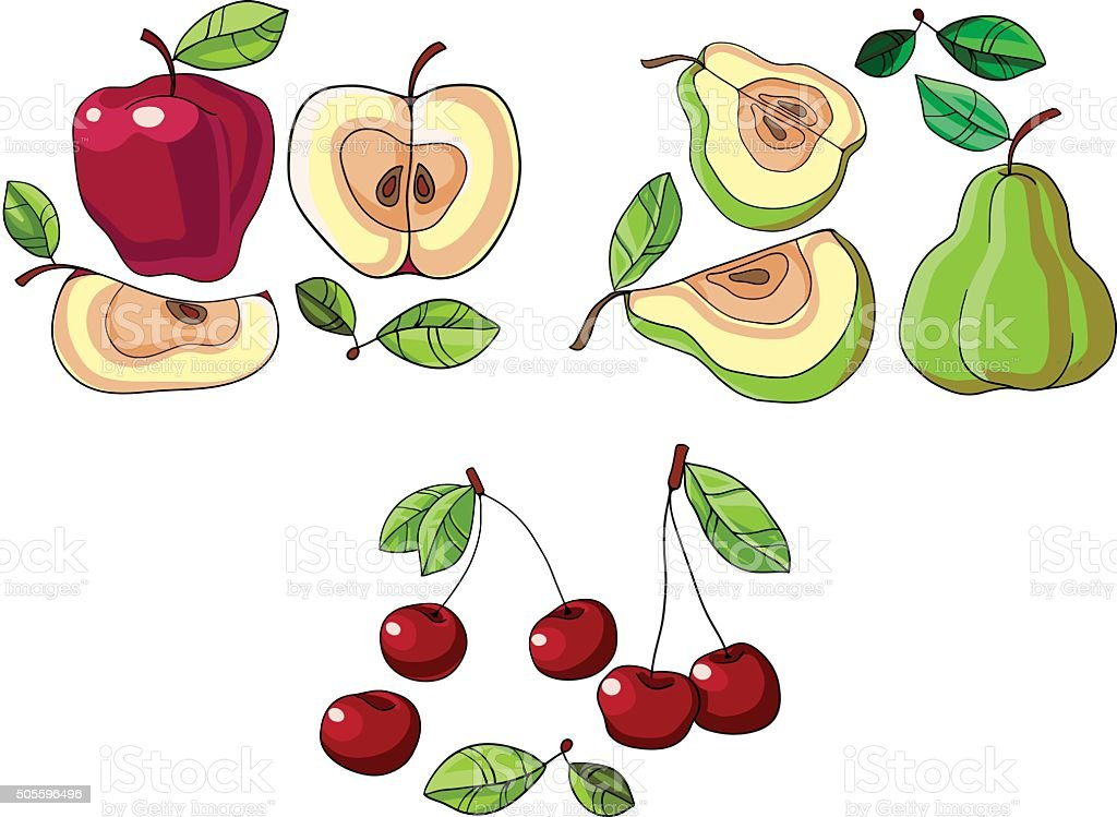 apple, pear and cherry vector art illustration