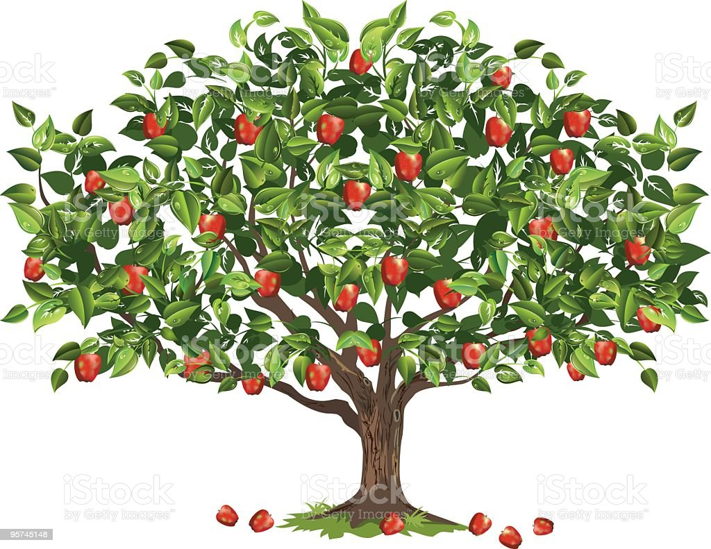 Apple Tree Filled With Ripe Fruit Ready For Harvest vector art illustration