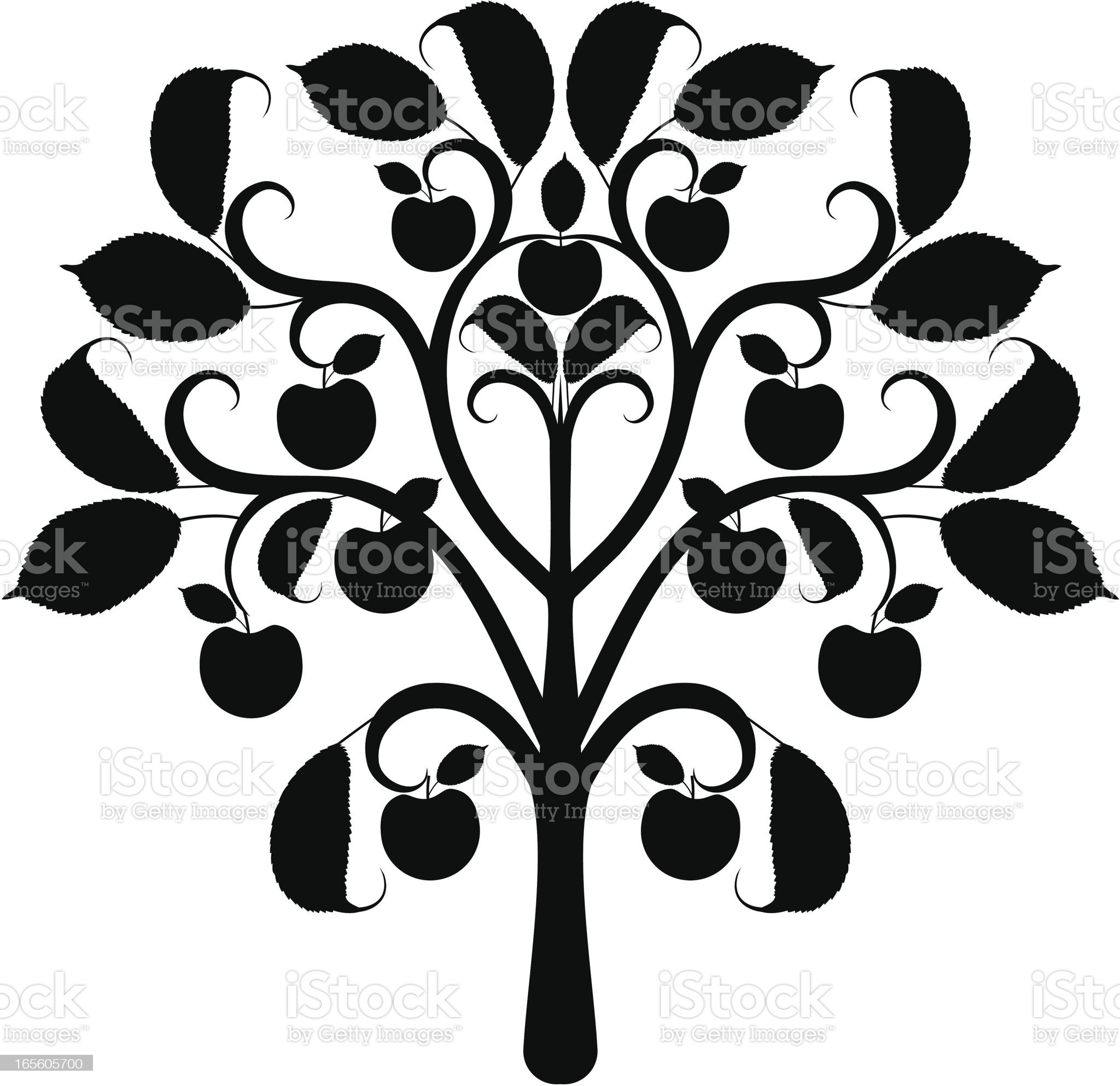 Apple tree silhouette royalty-free stock vector art