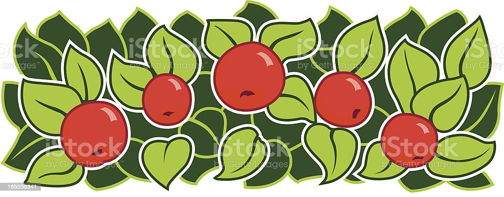 apples and leaves vector art illustration