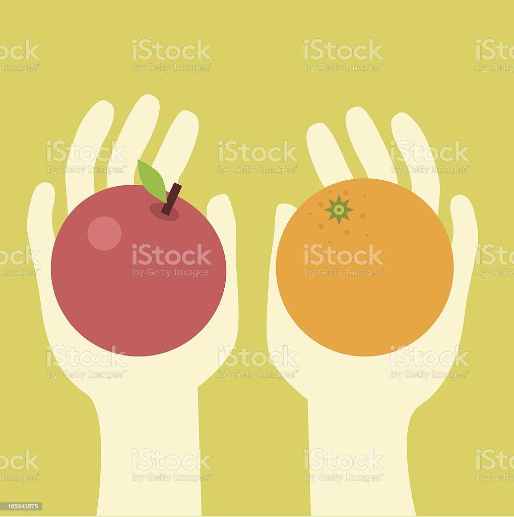 apples and oranges vector art illustration