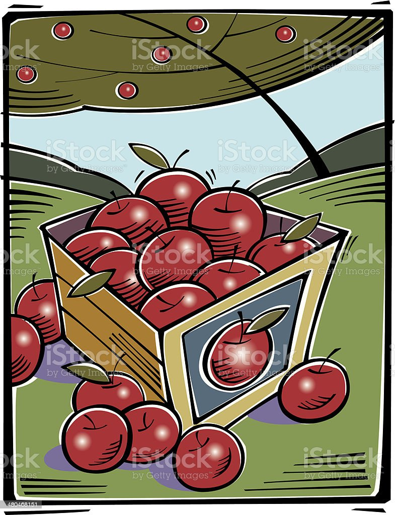 Apples Crate vector art illustration