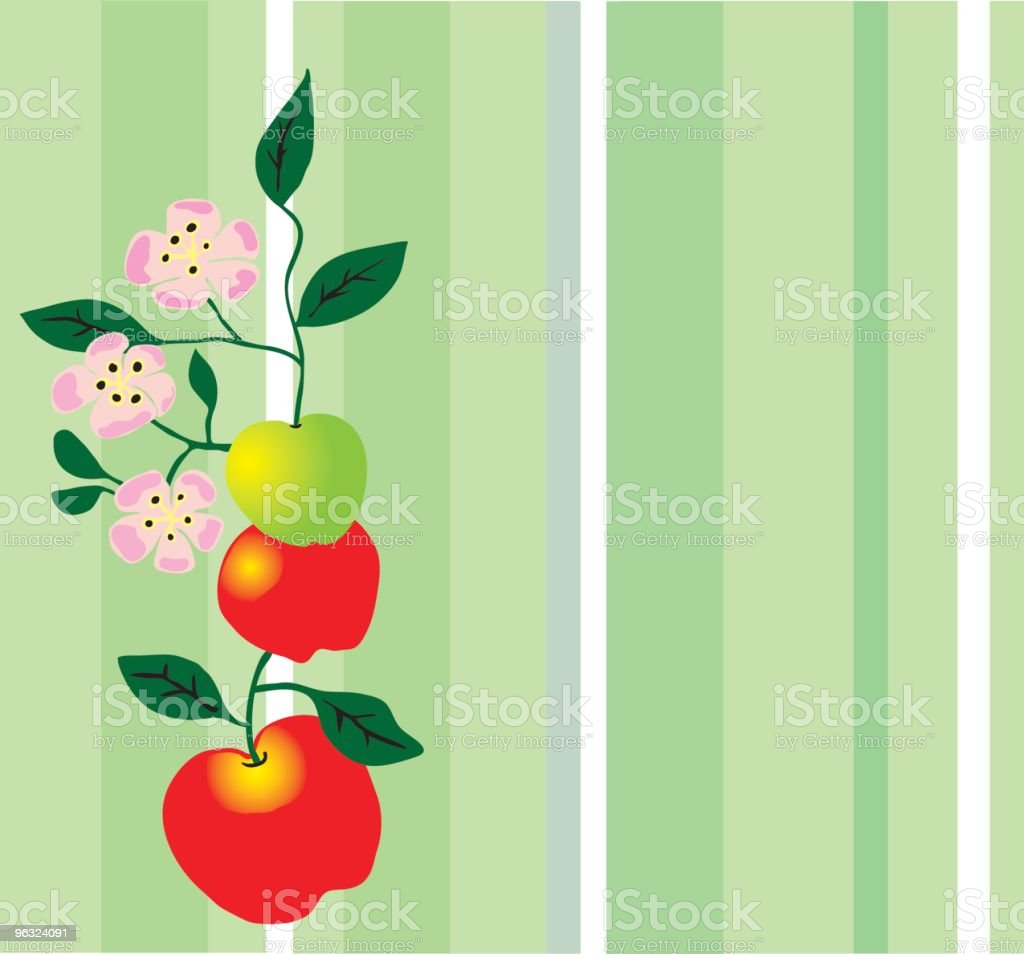 apples with blossoms royalty-free stock vector art