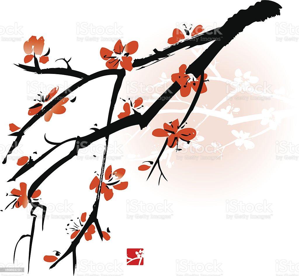 Apricot blossom royalty-free stock vector art