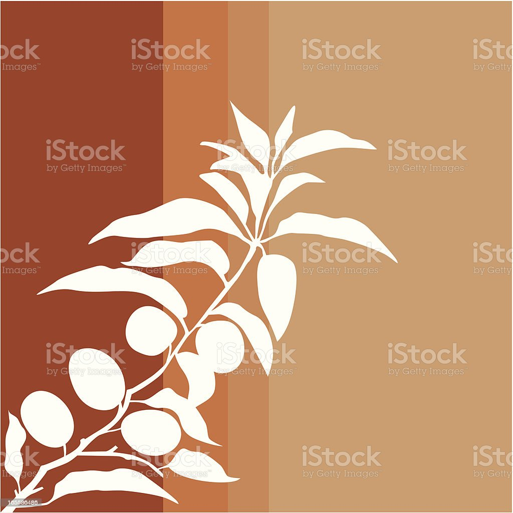 Apricot branch. royalty-free stock vector art