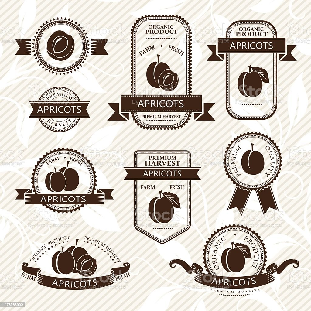 Apricot labels collection vector art illustration