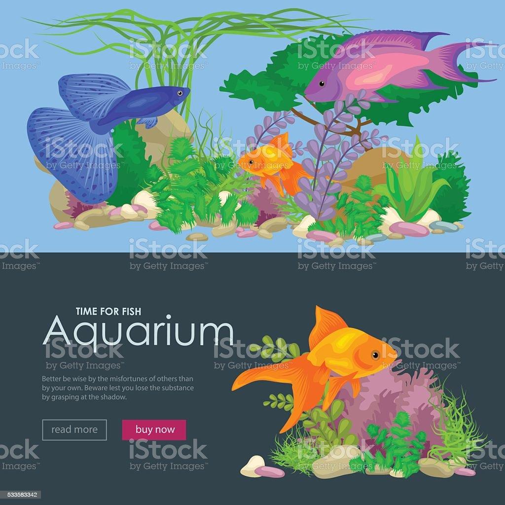 Aquarium fish, seaweed underwater, banner template layout with marine animal vector art illustration