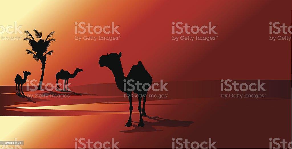 Arabian Sunset royalty-free stock vector art