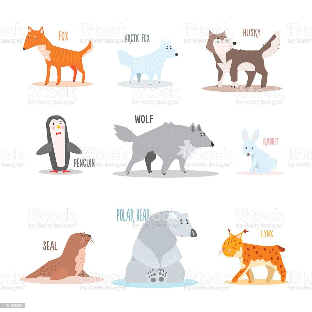 Arctic and Antarctic Animals, Penguin. Vector Illustration vector art illustration
