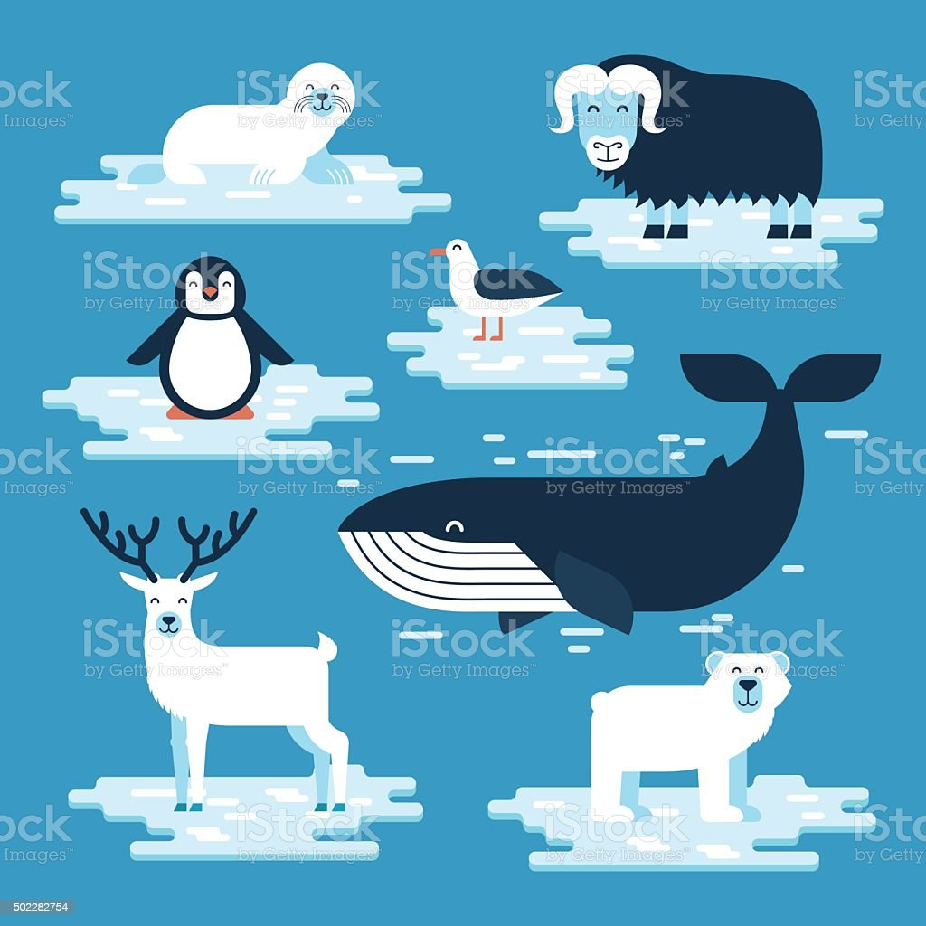 Arctic and Antarctic animals set vector art illustration