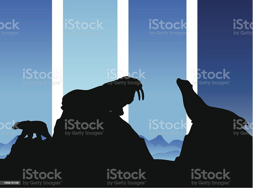 Arctic animals of walrus seal and polar bear in silhouette royalty-free stock vector art
