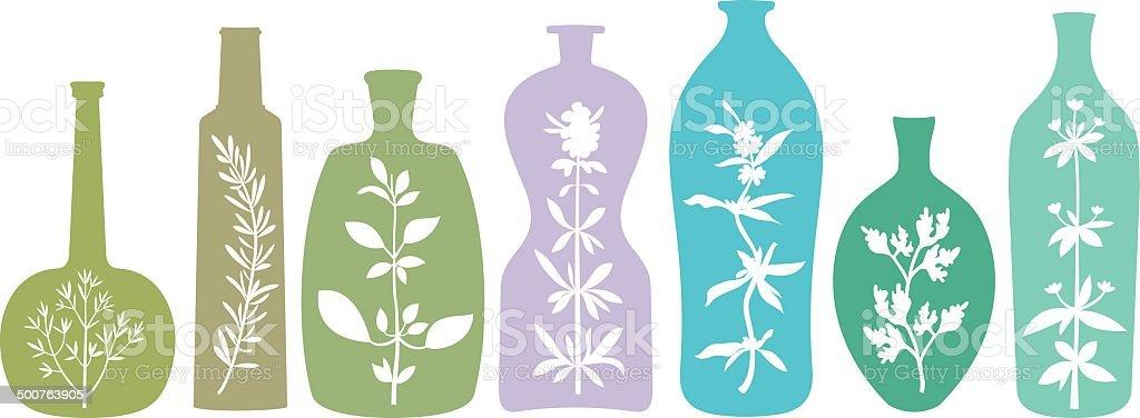 Aromatic Herbs in Bottles vector art illustration