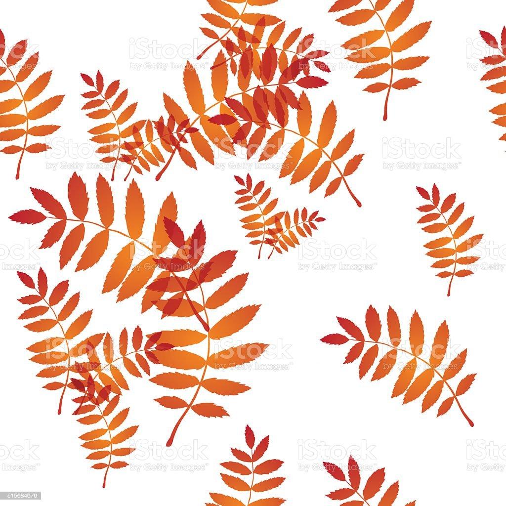 ash leaf pattern vector art illustration