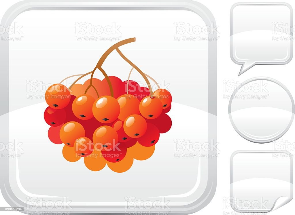 Ashberry icon on silver button royalty-free stock vector art