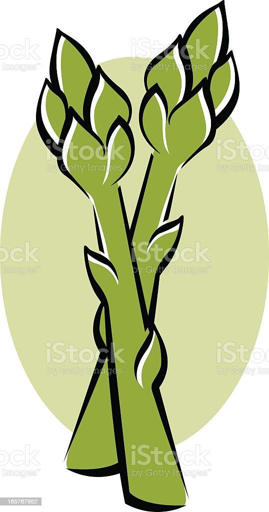Asparagus royalty-free stock vector art